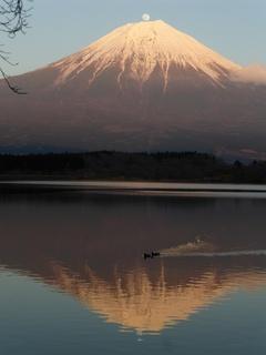 パール富士2.jpg