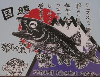 国鱒のイラスト看板.JPG