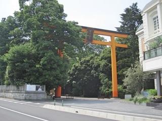 鳥居7.川越氷川神社.jpg